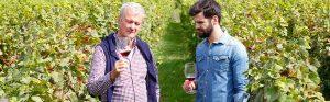interne Nachfolge im Weingut