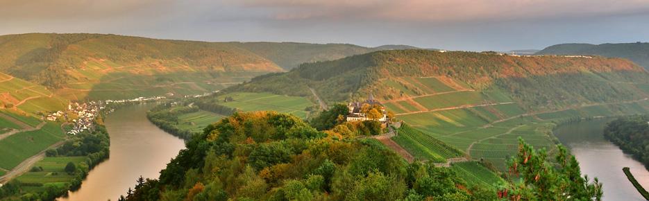 Weinbaugebiet Mosel: Steillagen-Weingut mit 5 Hektar zu verkaufen